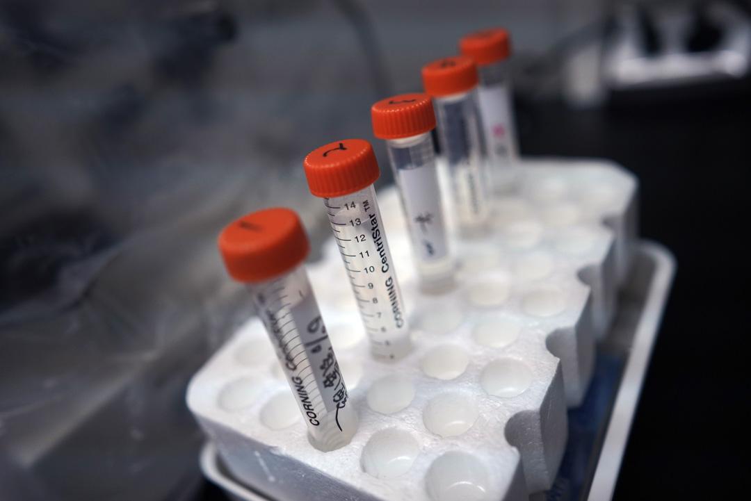 希諾谷實驗室裏的工具,從採集細胞、取卵、培養細胞,到移植細胞、B超檢測、分娩,都能在公司實驗室裏獨立操作。
