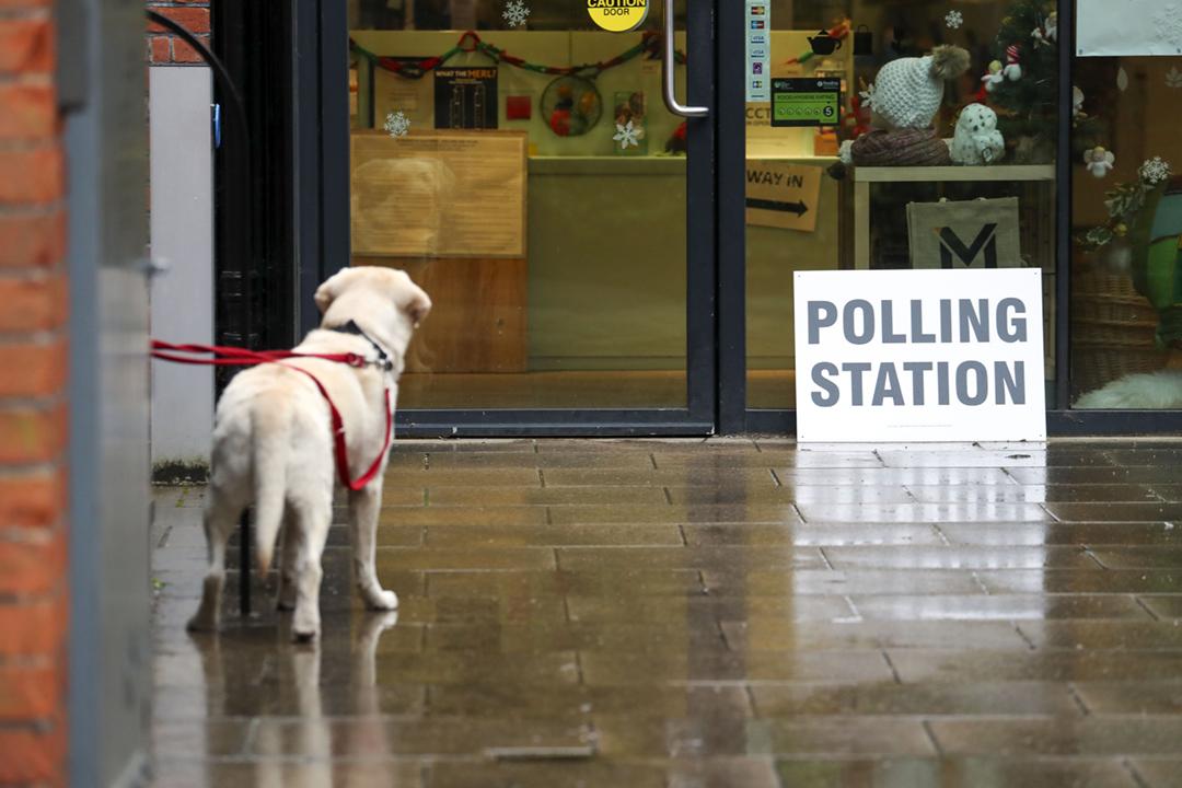 2019年12月12日在英國雷丁,一隻小狗在票站外等候主人履行公民責任;牠未有透露是否支持首相約翰遜(Boris Johnson)的脫歐政策。 攝:Steve Parsons / PA Images via Getty Images
