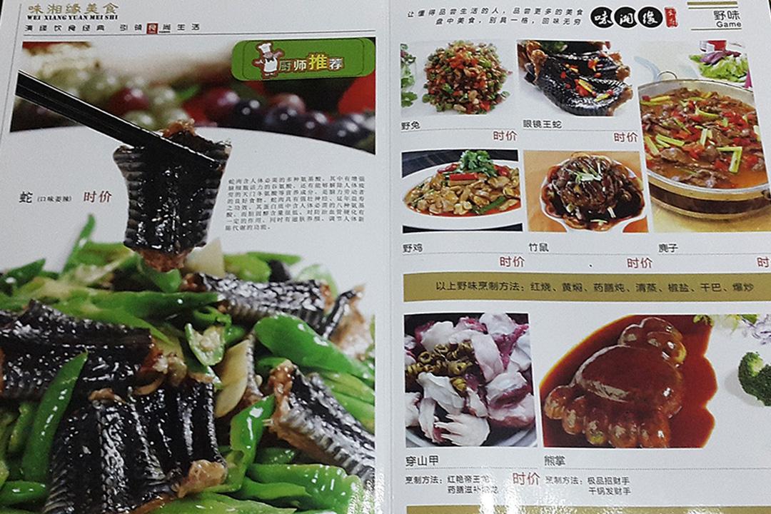 緬甸的中國餐館,穿山甲的圖片在餐單上。