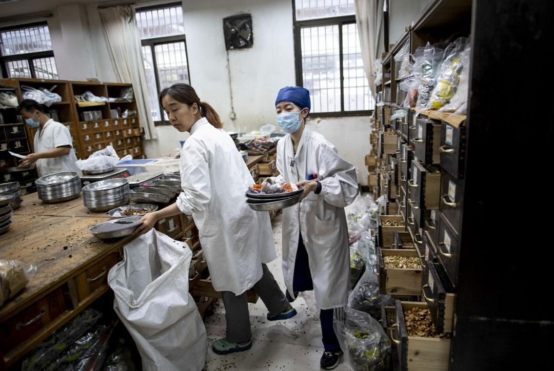 2018年11月7日,上海中醫藥大學附屬的岳陽醫院,中醫師在的藥房中對藥物進行分類。