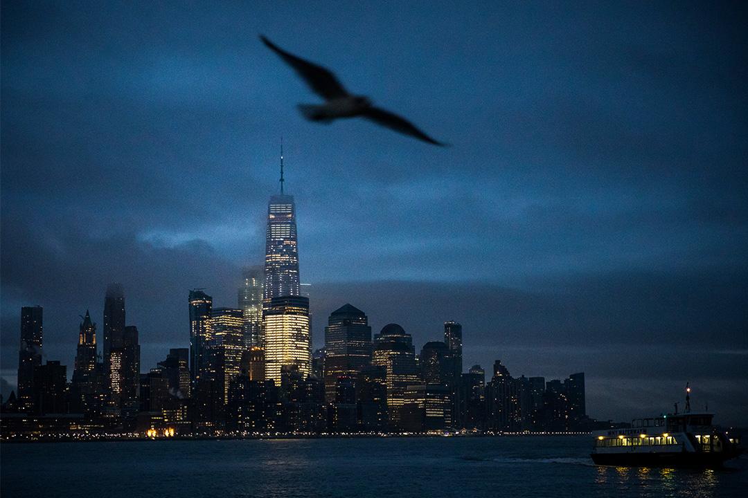2019年2月8日曼哈頓,一隻鳥飛過美國新澤西州霍博肯的哈德遜河。