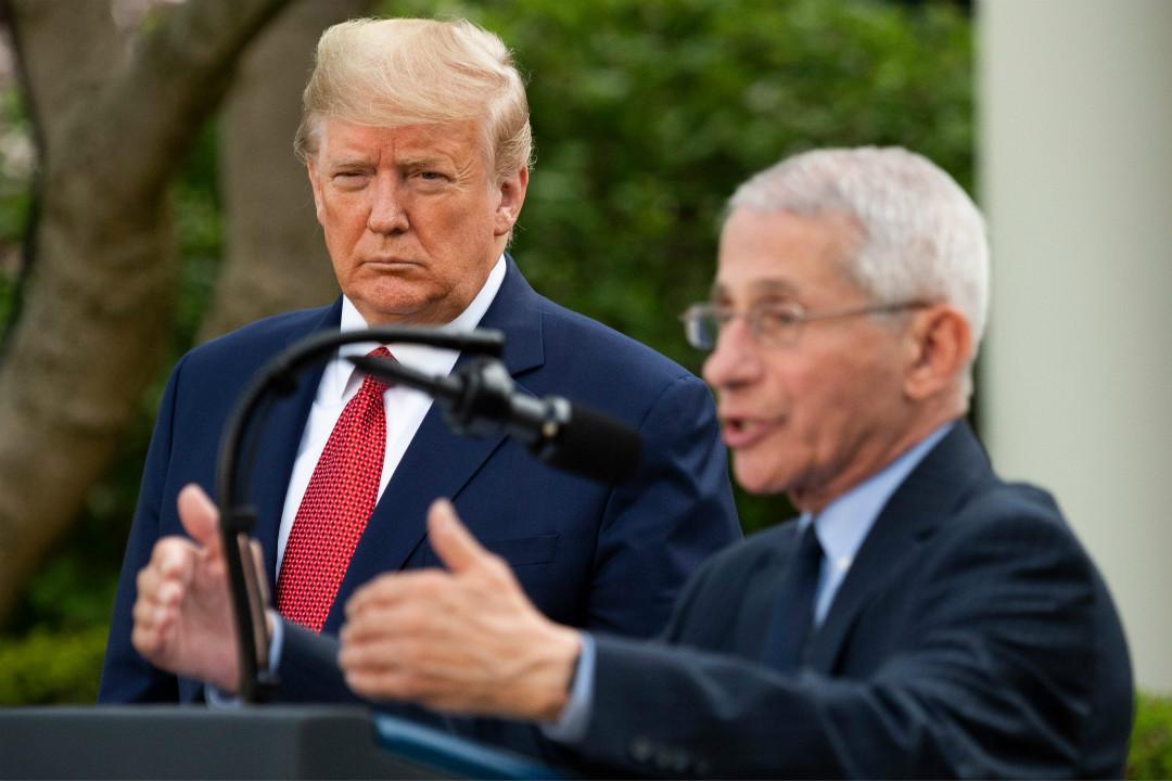 2020年3月29日,美國總統特朗普與國家過敏和傳染病研究所主任福奇(Anthony Fauci)在白宮舉行記者會。 攝:Jim Watson/Getty Images