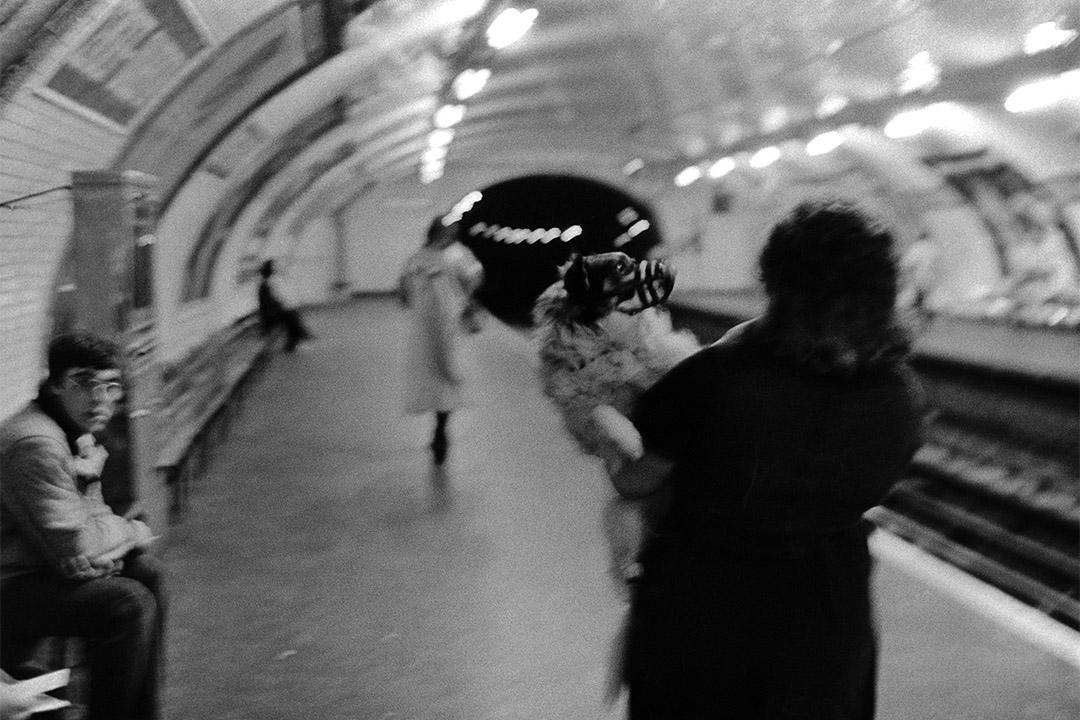 巴黎地鐵婦女與狗II(1976-1980)。