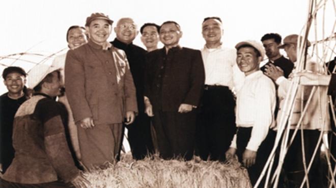 1958年10月9日,鄧小平在天津視察「大躍進」成果,站在水稻上與農民合照。
