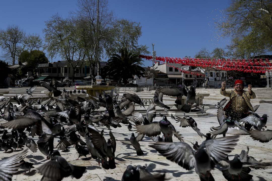2020年4月24日,土耳其伊斯坦堡,一名穆斯林在伊普蘇丹清真寺(Eyup Sultan Mosque前餵鴿子。