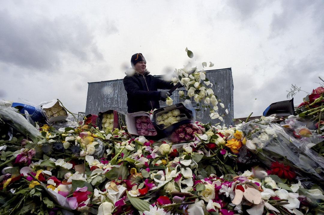 2020年4月13日,俄羅斯莫斯科新冠狀病毒大流行期間,由於需求下降,鮮花店的員工銷毀未能售出的鮮花。