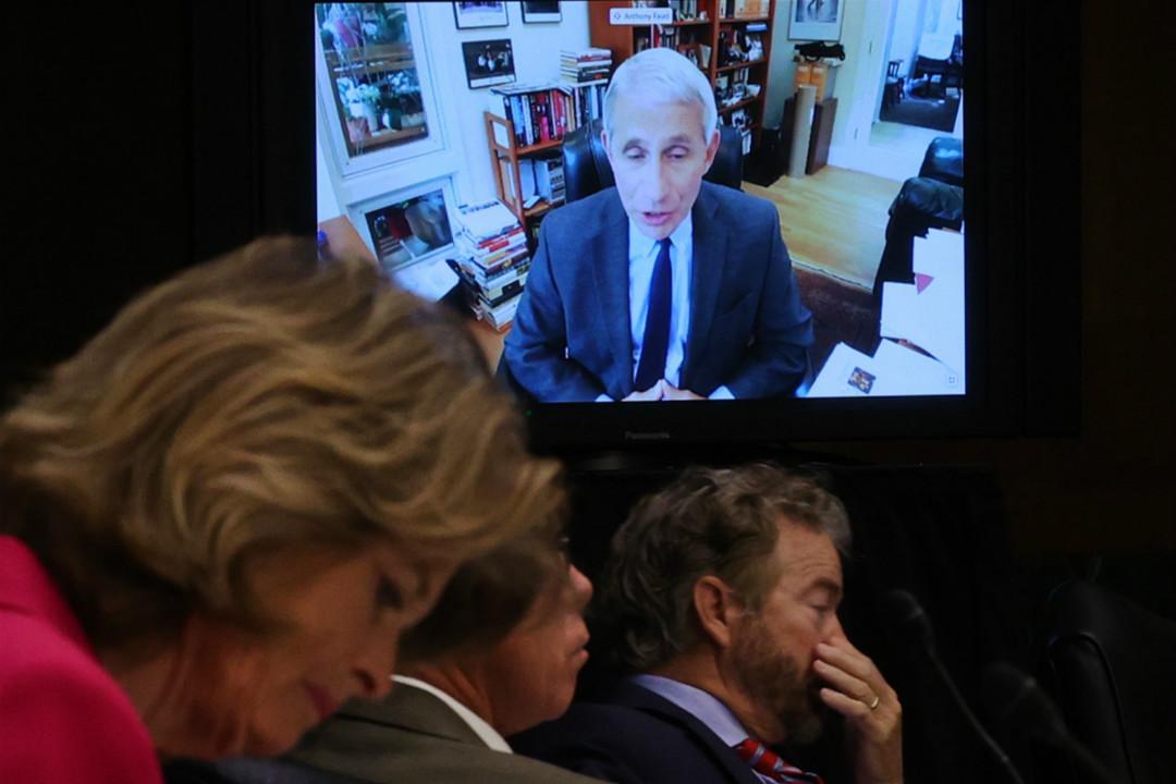 2020年5月12日,美國衛生專家福奇(Anthony Fauci)出席國會參議院聽證會。 攝:Win McNamee/Getty Images