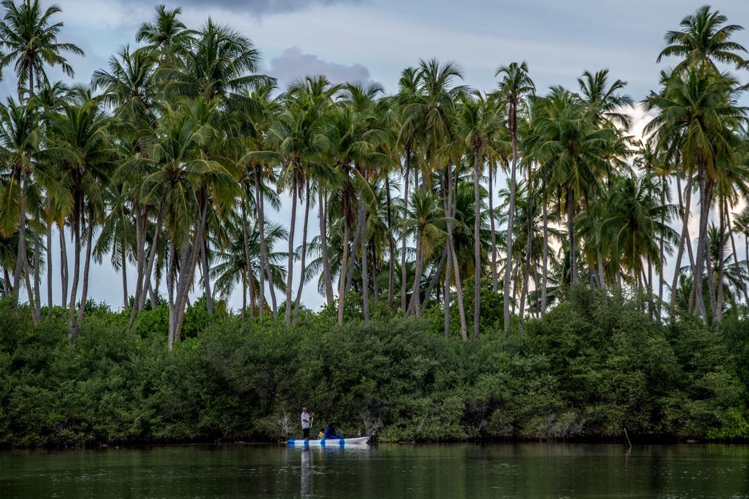 2019年12月14日,馬爾代夫阿杜市的濕地區,一個家庭正在划艇。