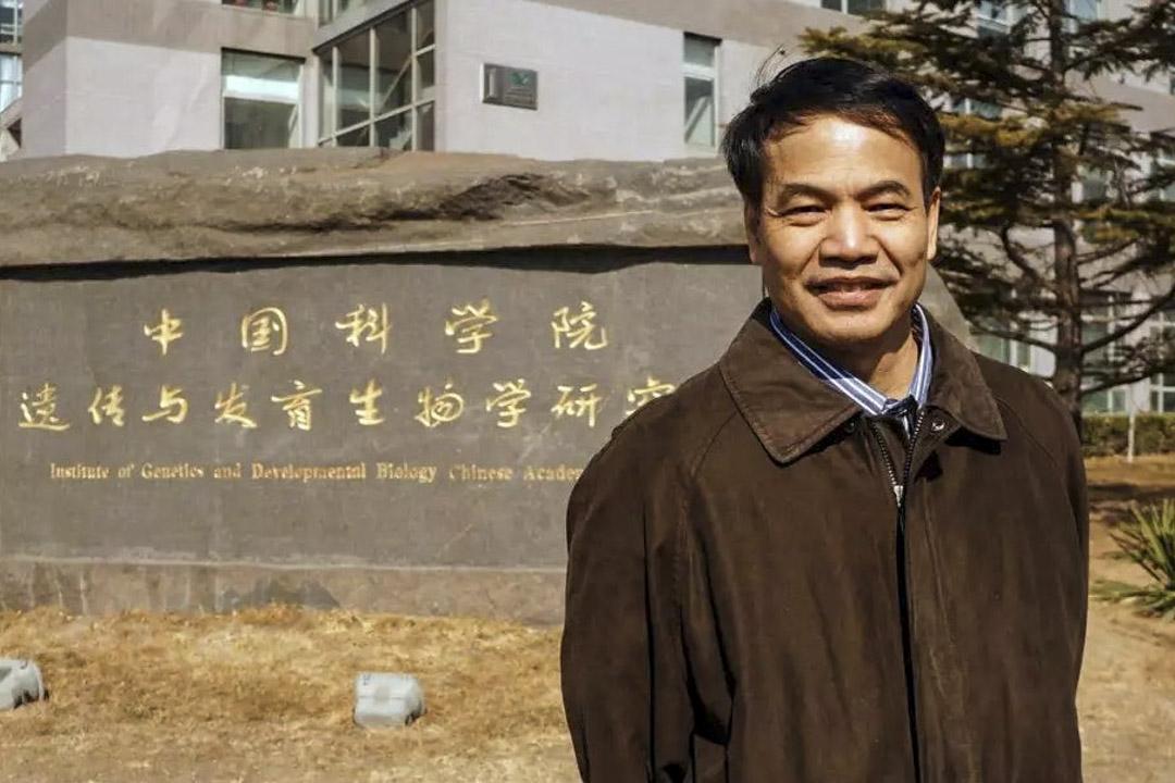 2020年5月11日,華人科學家李曉江承認在參與中國「千人計劃」項目時對美國政府隱瞞了收入,被法院宣判虛假報税罪名成立,獲一年緩刑,並支付約3.5萬美金的賠償。