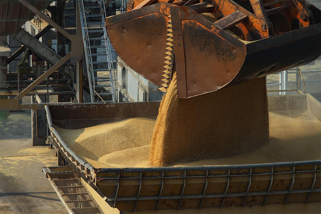 2014年2月21日中國江蘇省南通市,進口的大麥是在一艘貨船上。