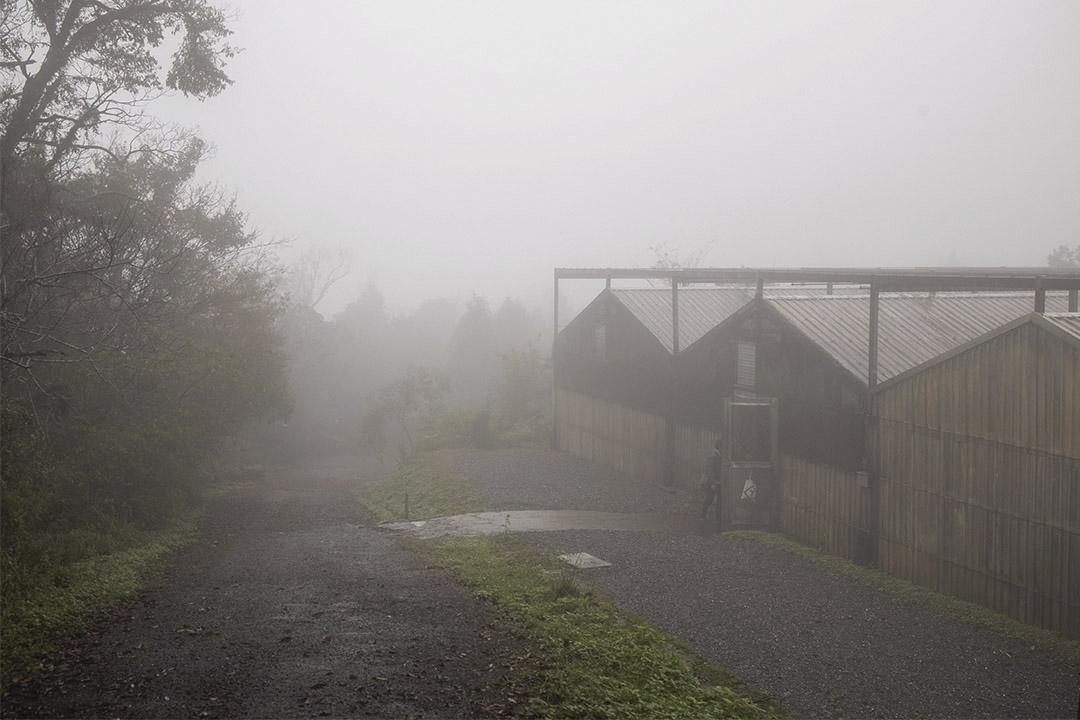 福山植物園的温室。