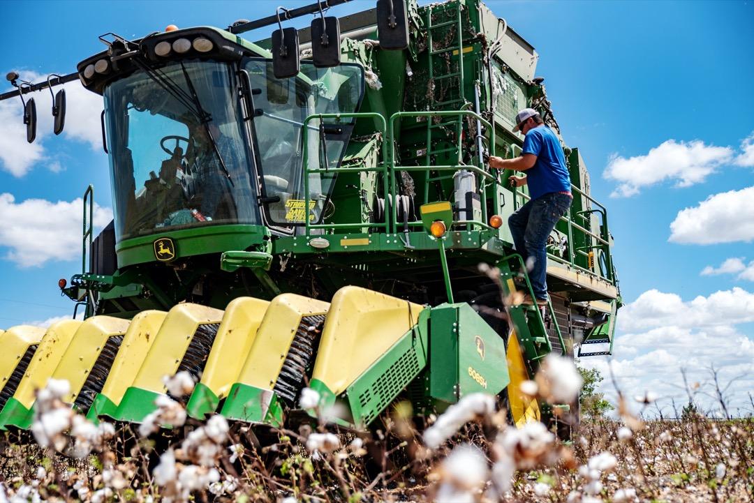 德州是全美第三大的農業州,2018年農業產值高達220億美金,僅次於加州與愛荷華州,有主要六種行間作物,包括黃豆、小麥、玉米、高粱、稻,還有棉花。圖為德州的棉花田。