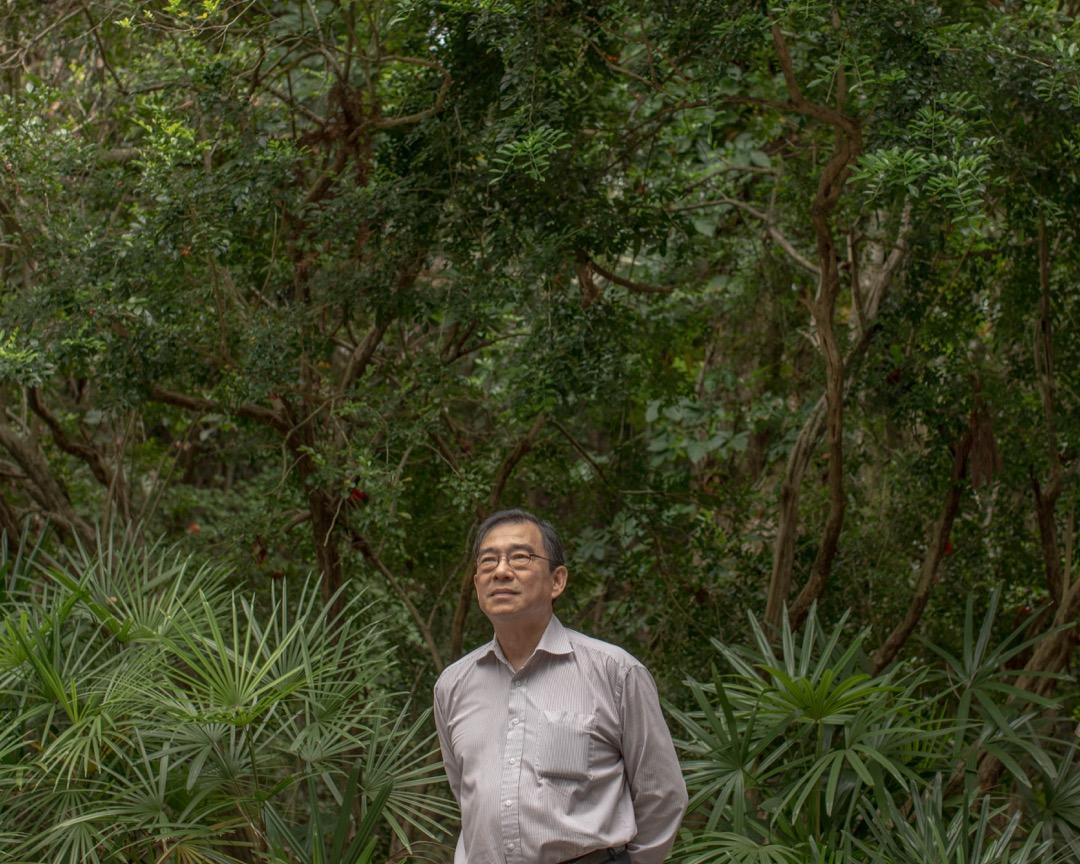 樹木專家詹志勇。