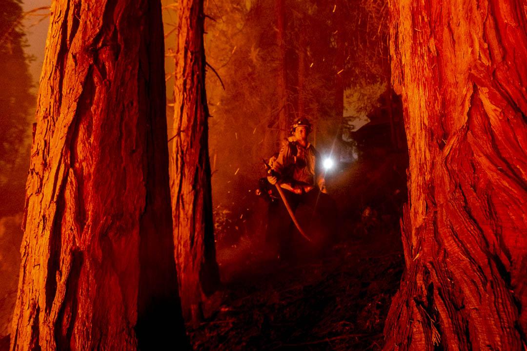 2020年9月7日,加州一場山林大火,消防員正努力撲救。