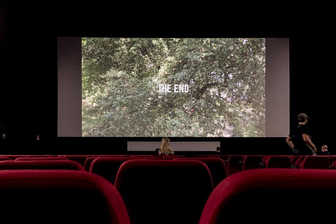 2020年9月的威尼斯電影節,電影宮群的其中一個影廳。 攝影:十二辰子