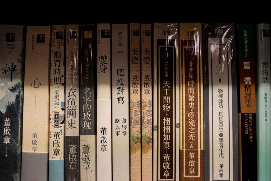 香港作家董啟章的文學作品。