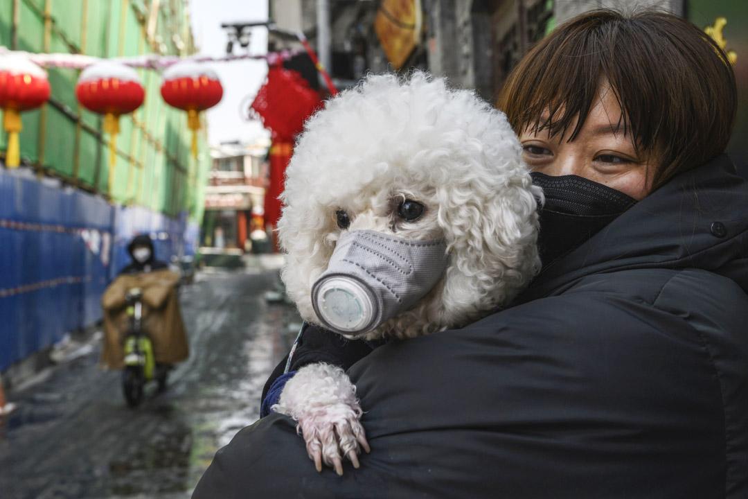 2020年2月7日,北京街上一名女士與她的寵物狗都戴著防護口罩。