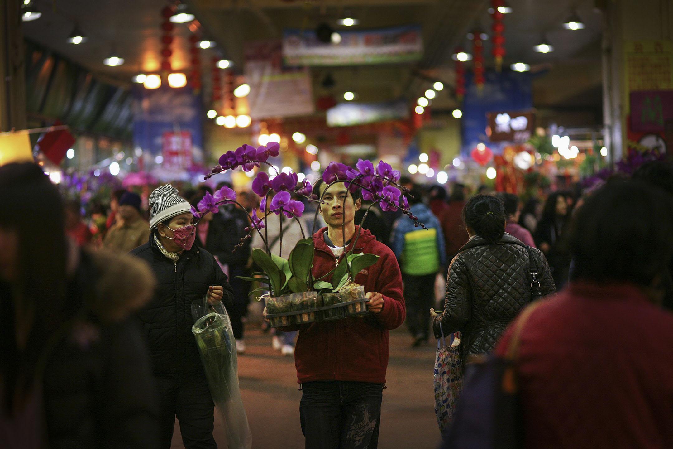 2011年1月31日台北,一個男人拿著蘭花在台北的花市上。