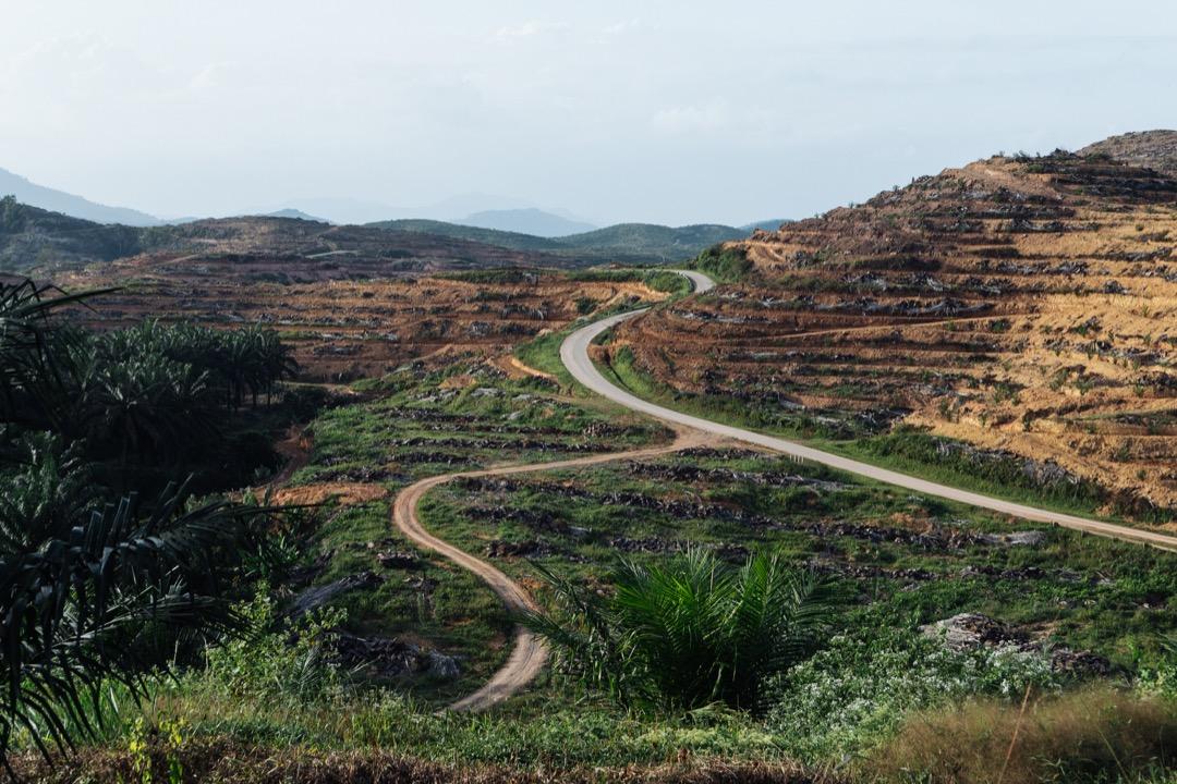 在前往瓜拉格村的路上,途經正在休耕的油棕林以及崎嶇陡峭的山路。