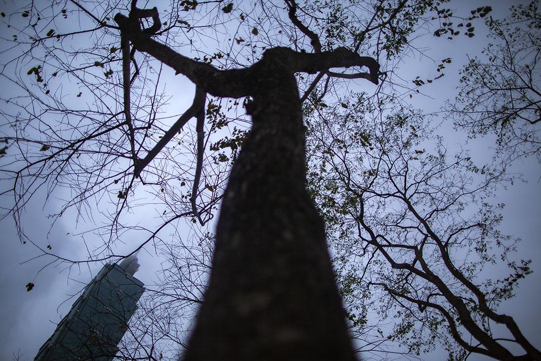 台灣台北101。