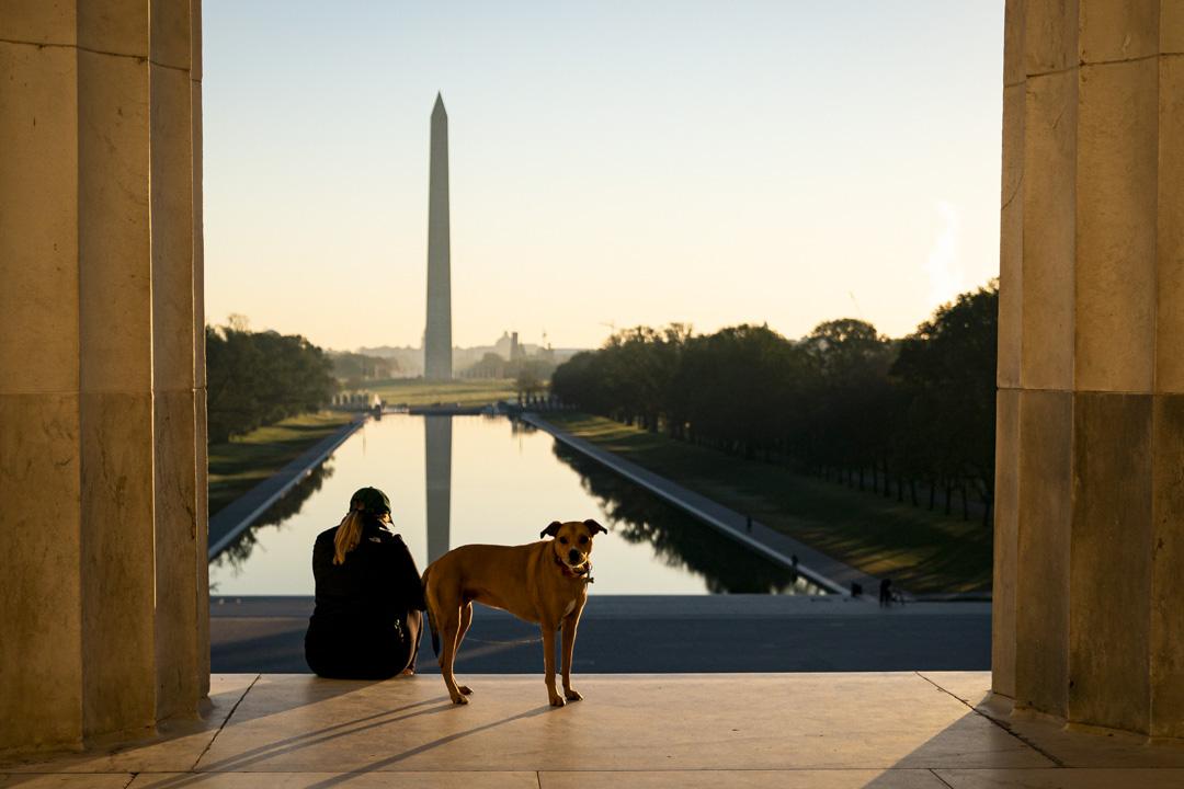 2020年11月4日華盛頓,一名婦女和她的狗在林肯紀念堂的台階上。