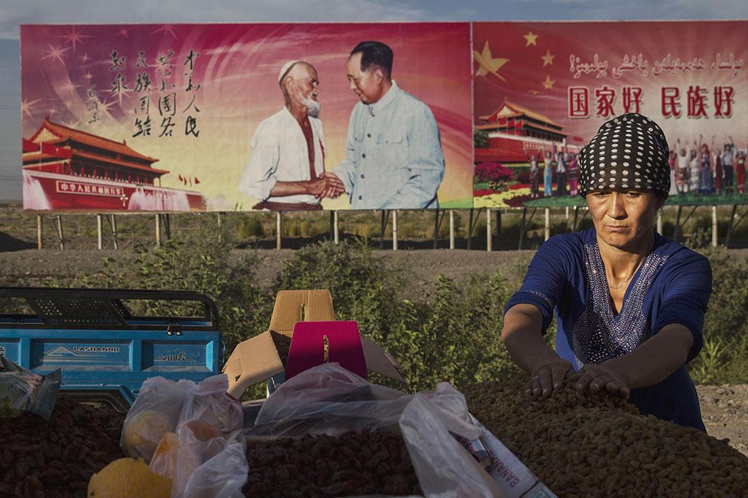2016年9月8日吐魯番,一名維吾爾族婦女在她的攤位整理葡萄乾,背景是已故共產黨領導人毛澤東的宣傳海報。