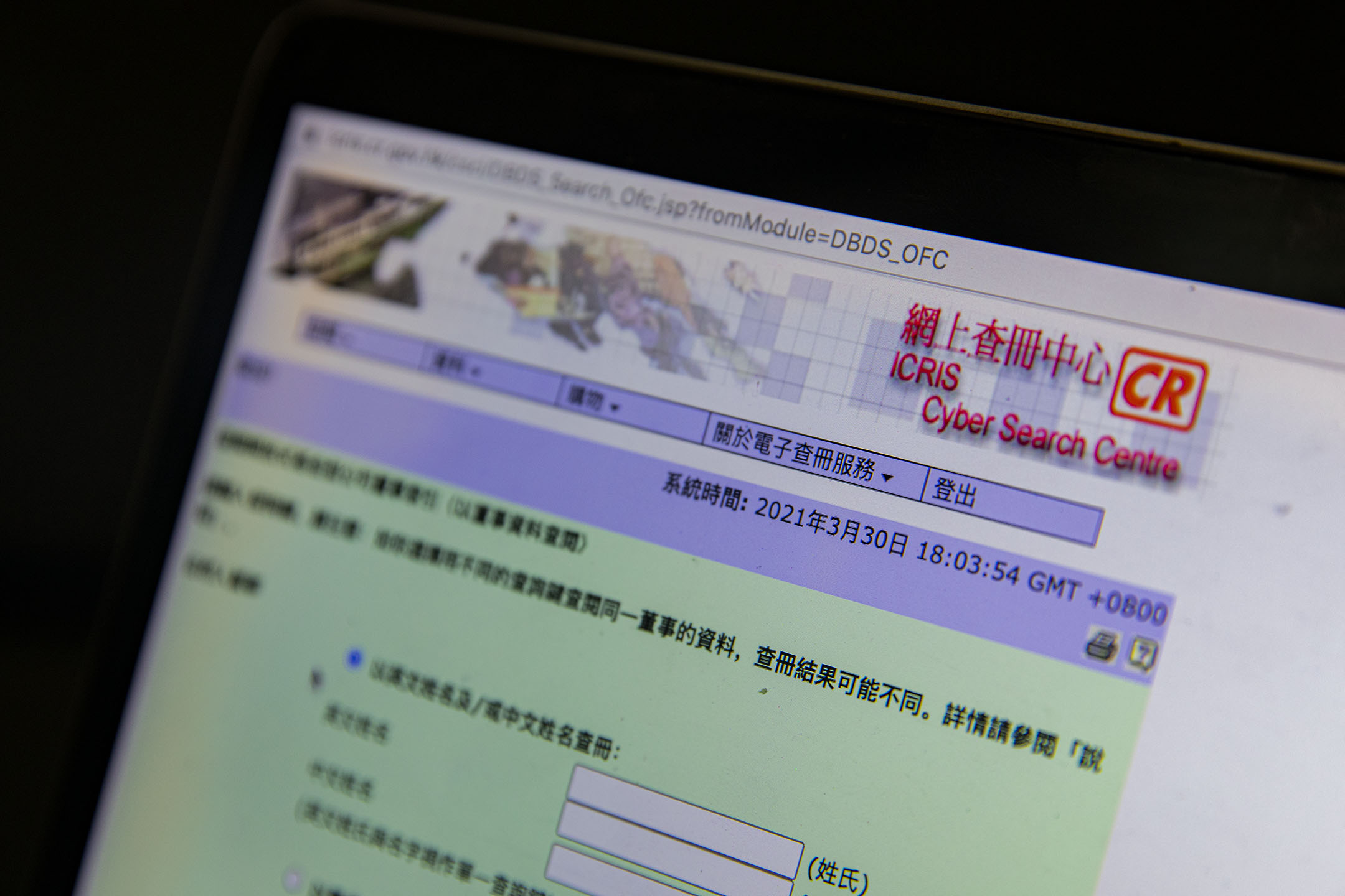 公司註冊處網上查冊中心網頁。 攝:陳焯煇/端傳媒