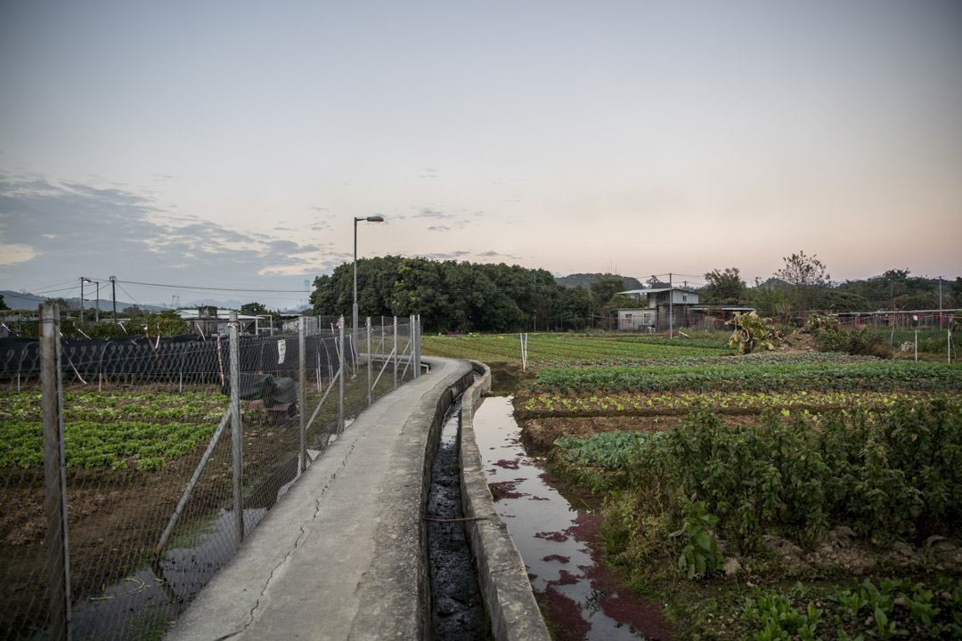 蕉徑「達記園」旁的小路。
