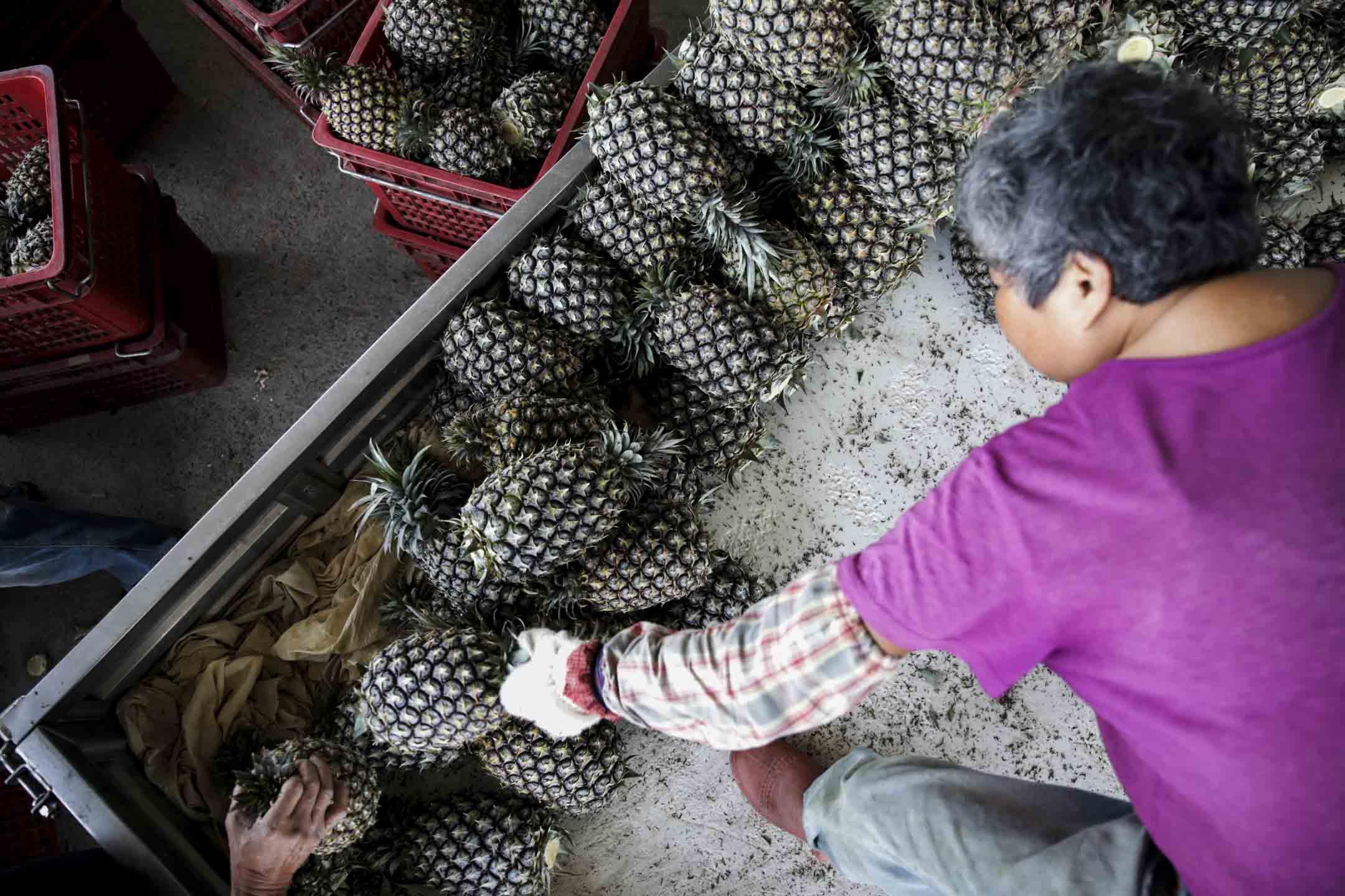 2021年3月4日,台灣南投縣的一個配送中心,農民從卡車上卸下收穫的鳳梨。 攝:I-Hwa Cheng/Bloomberg via Getty Images