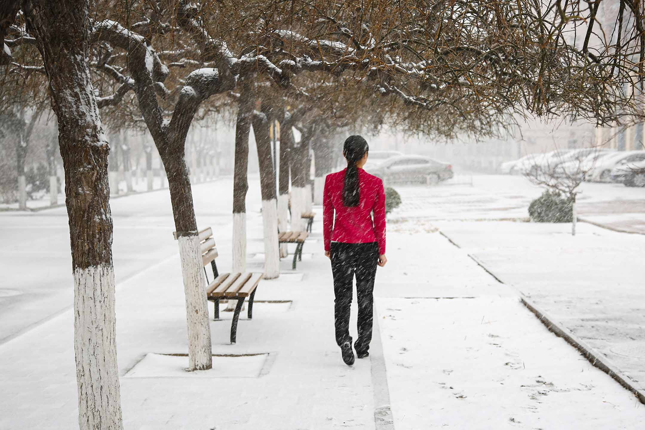 2017年2月21日北京,一個女人在雪中行走。 圖:Visual China Group via Getty Images