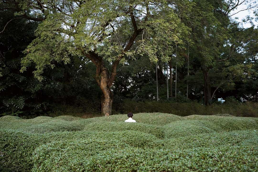 攝影:沈諾基