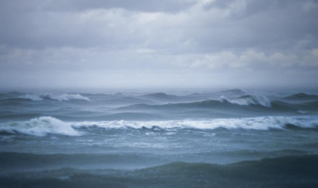 弗柯・克普的紀錄片《海的風景》(Seascape,2018)劇照。 圖:TIDF台灣國際紀錄片影展提供