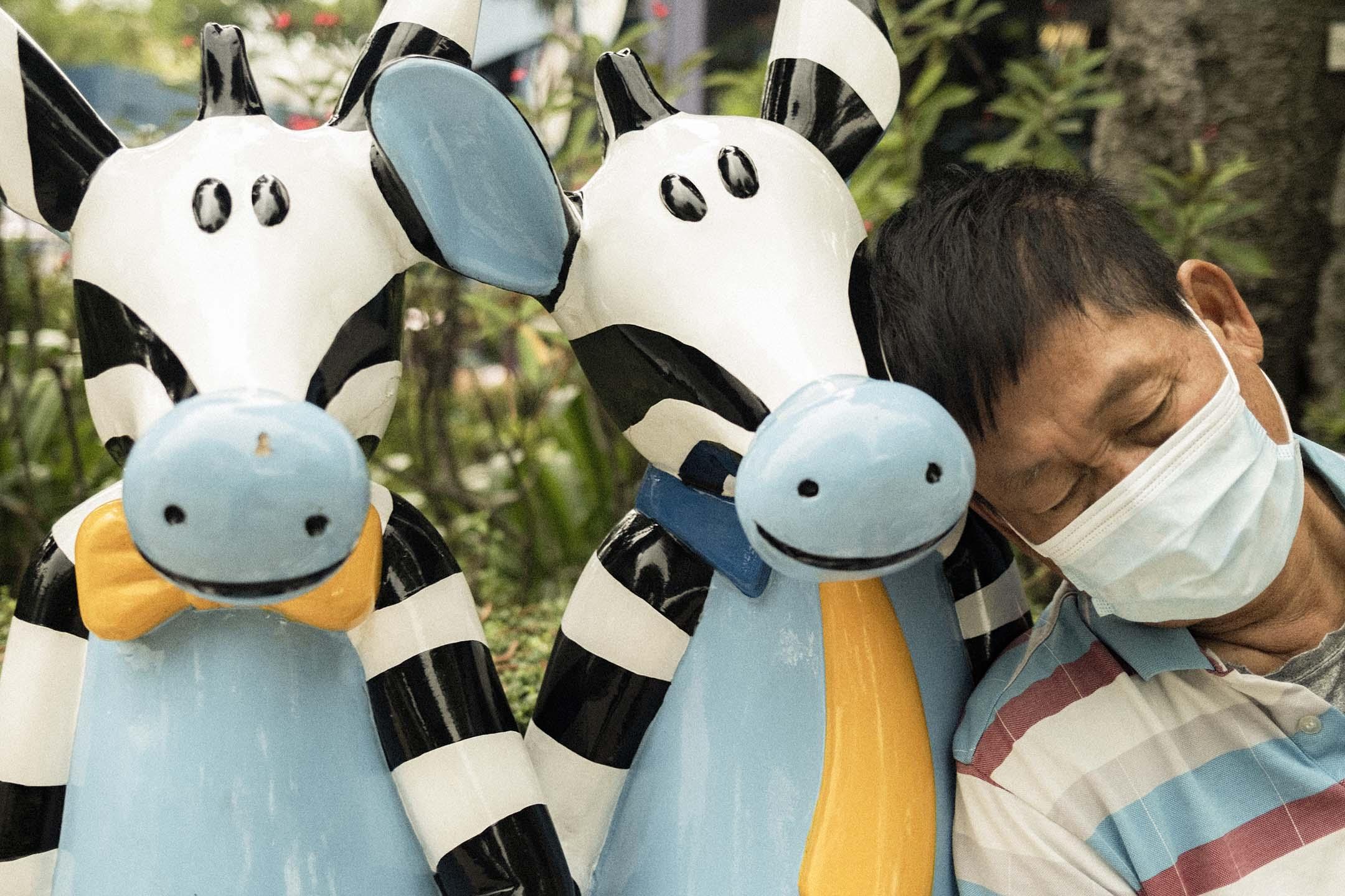 2021年4月18日,遊人在斑馬擺設旁睡覺。