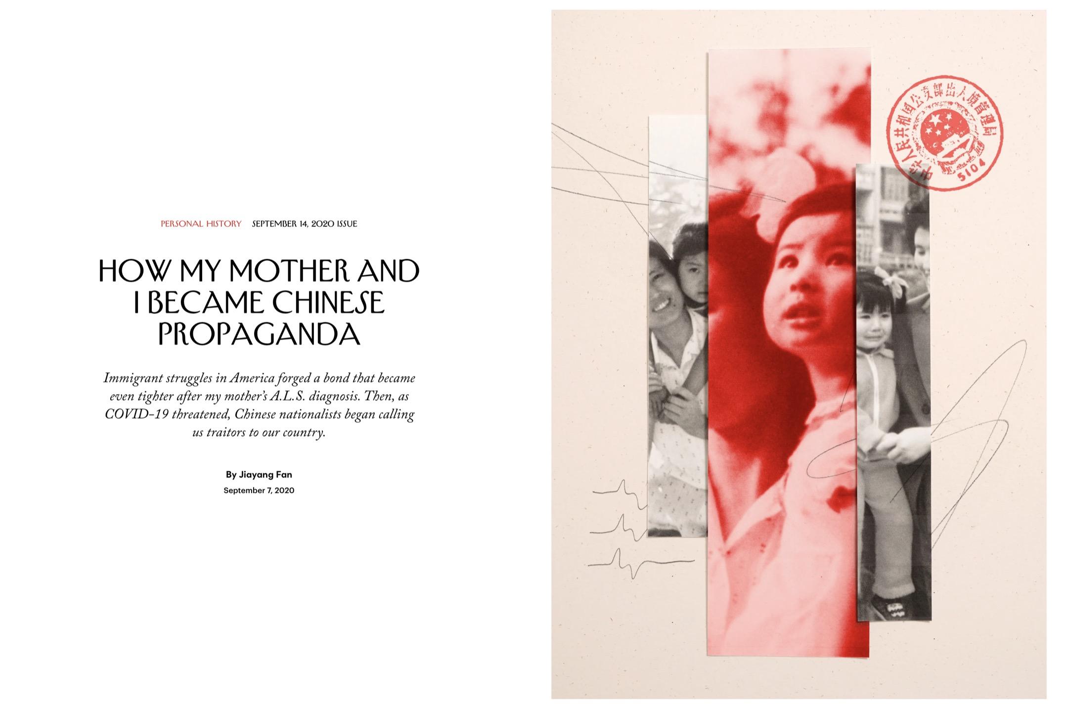 2020年春天,《紐約客》希望樊嘉揚寫一篇關於「小粉紅」的報導,講述她經歷的網絡暴力。她開始重新閲讀那些攻擊,並希望寫出網絡背後的人們的複雜性。這篇文章是當月《紐約客》的封面報導。