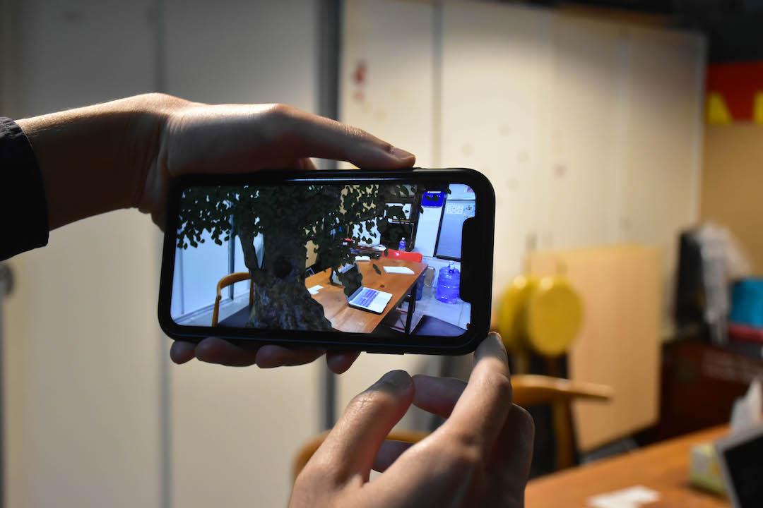 AR技術令這棵遠在荔枝窩的空心秋楓,近在你虛擬的眼前,讓它聆聽最深不見天的秘密。 圖:Ailey Chan
