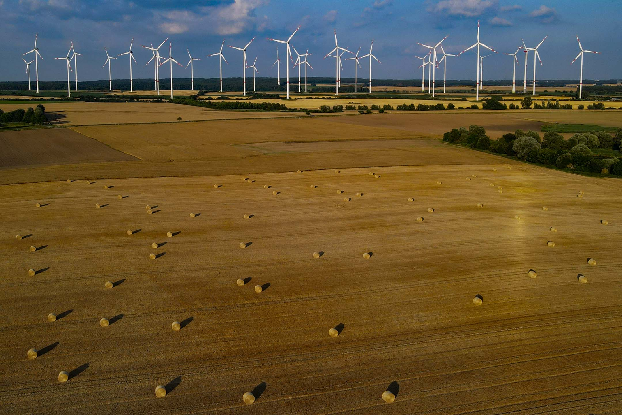 2021年7月15日勃蘭登堡,傍晚的太陽在收割的稻田上投下長長的陰影,背後是風力發電機。