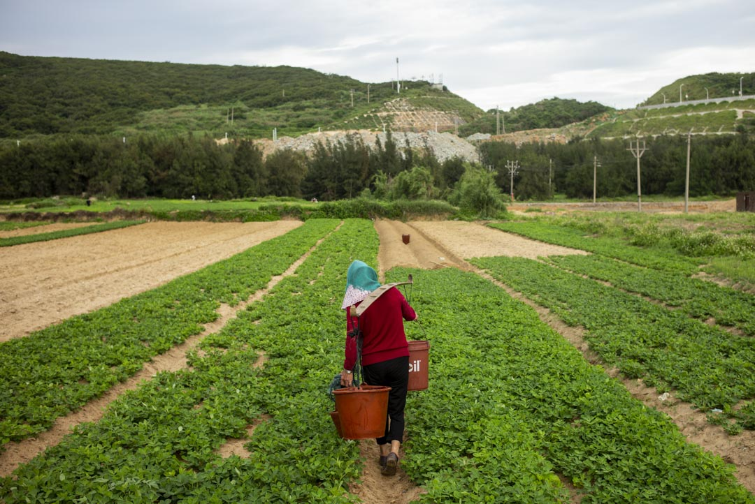 平潭島的農民。