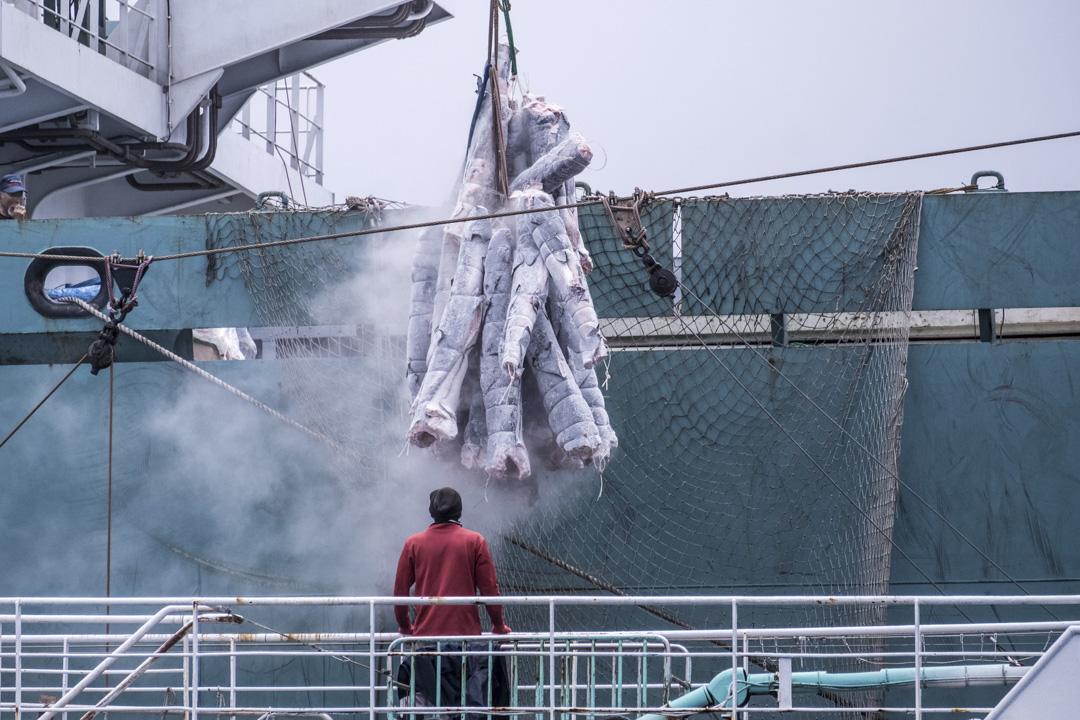 2019年,一艘台灣延繩釣船將急凍魚轉移到一艘從東京出發、懸掛巴拿馬旗的捕撈船。