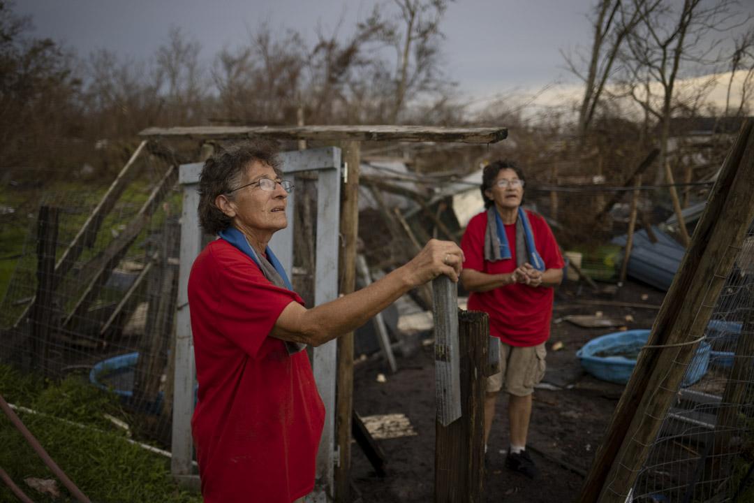 2021年9月1日,美國路易斯安那州城市金草地(Golden Meadow),66歲雙胞胎姊妹Rosalie和Bridget Serigny在颶風艾達過後,回家修補破損的雞舍。 攝:Adrees Latif /Reuters/達志影像