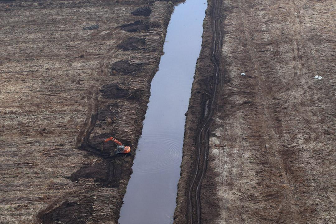 印尼蘇門塔臘一個紙漿種植園,一輛挖掘機在園內的排水渠附近工作。