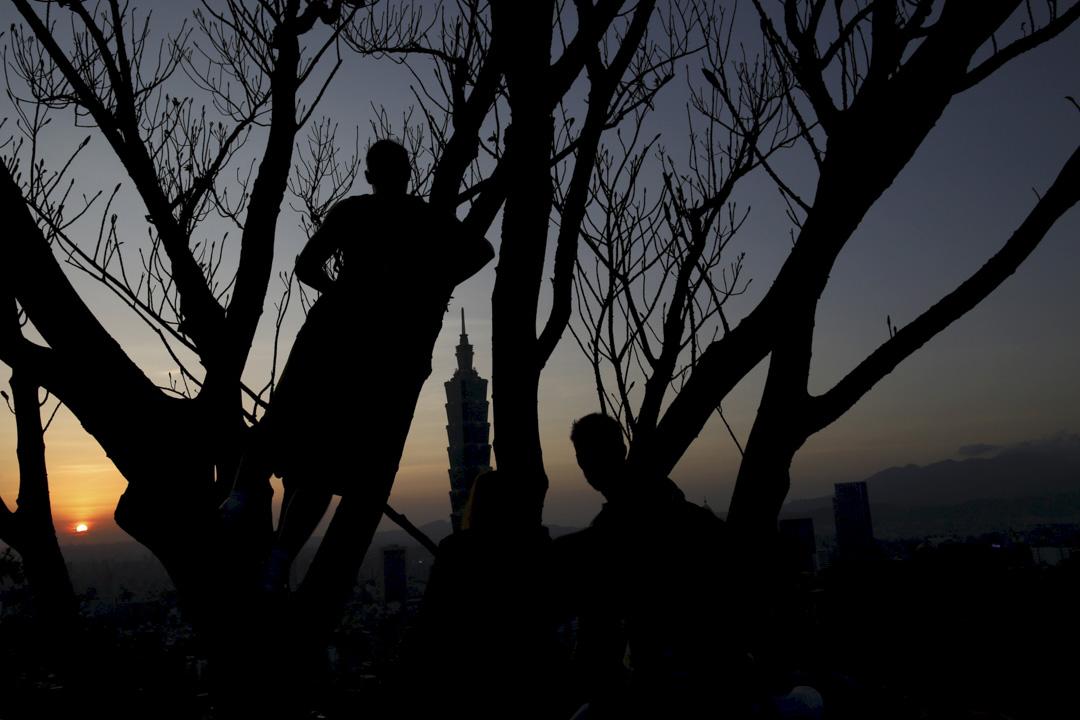 2016年4月19日,台北一名男子在日落時爬樹,背景是台北 101。 攝:Tyrone Siu/Reuters/達志影像