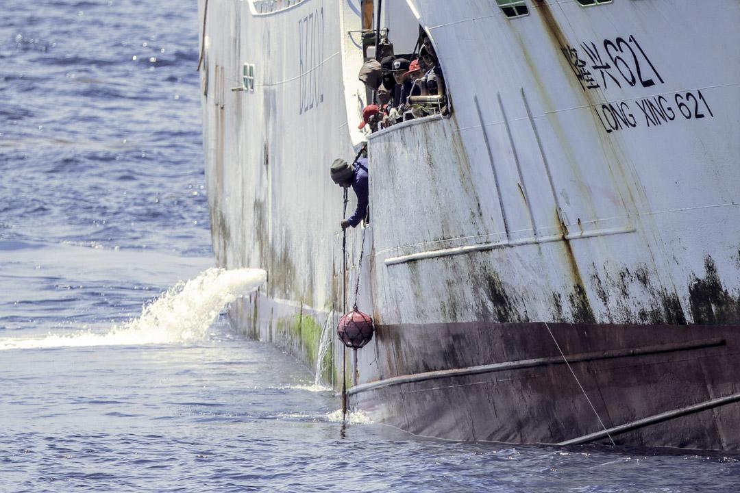 2019年9月,大西洋中部,大連海洋漁業「隆興621」漁船上的一名移民工把一條鯊魚拖到船上。