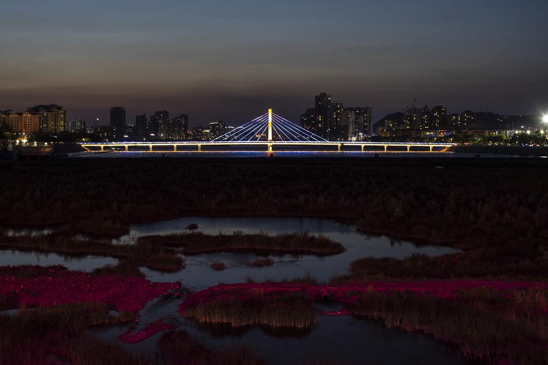 夜間的大柳塔。