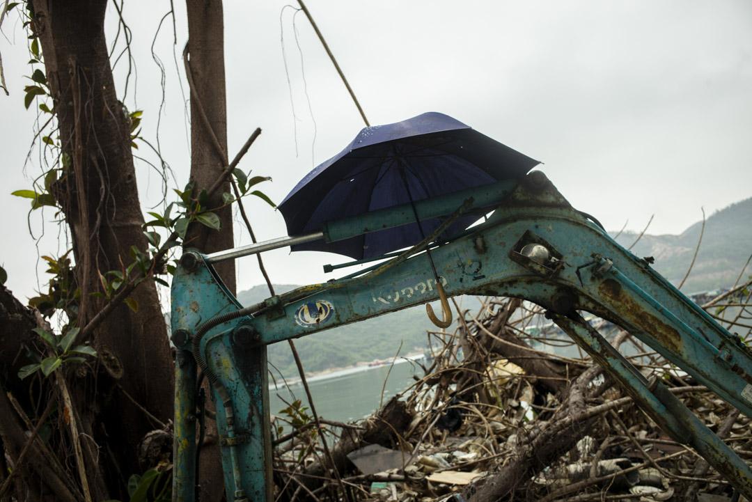 南丫島的一把傘。